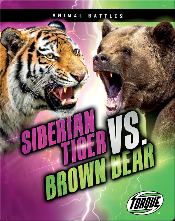 Animal Battles: Siberian Tiger vs. Brown Bear