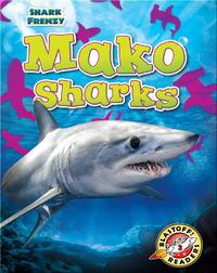 Shark Frenzy: Mako Sharks