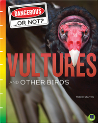 Dangerous...or Not?: Vultures and Other Birds
