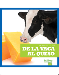 De la vaca al queso (From Cow to Cheese)