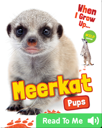When I Grow Up: Meerkat Pups