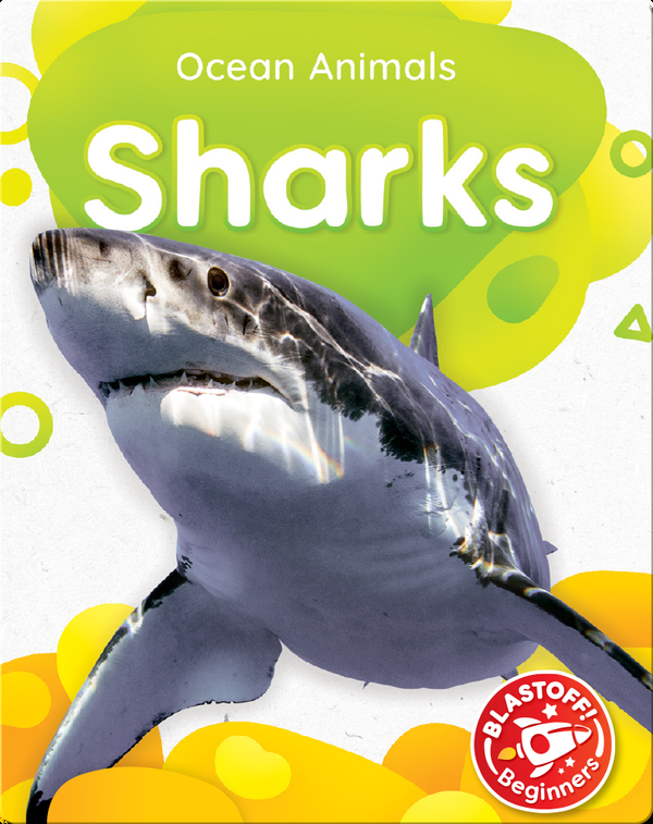Ocean Animals: Sharks