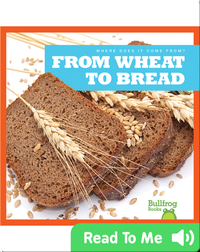 Where Does It Come From?: From Wheat to Bread