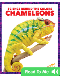 Science Behind the Colors: Chameleons