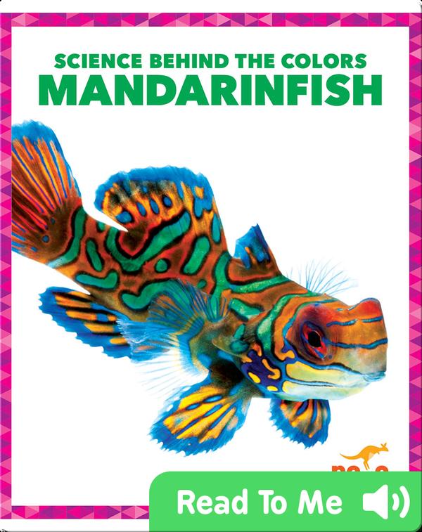 Science Behind the Colors: Mandarinfish