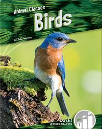Animal Classes: Birds
