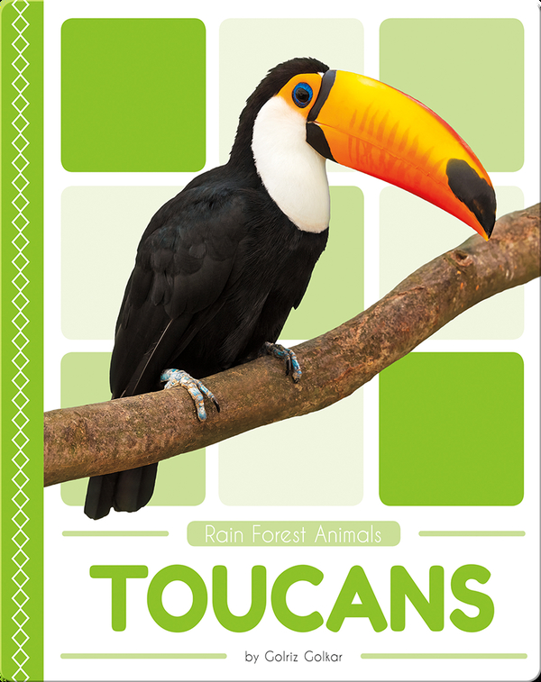 Rain Forest Animals: Toucans