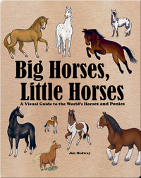 Big Horses, Little Horses: A Visual Guide to the World's Horses and Ponies