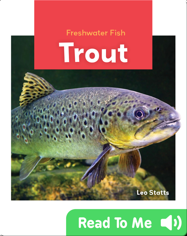 Freshwater Fish: Trout