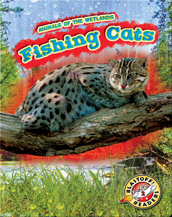 Animals of the Wetlands: Fishing Cats