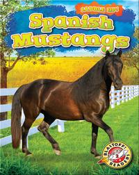 Saddle Up!: Spanish Mustangs
