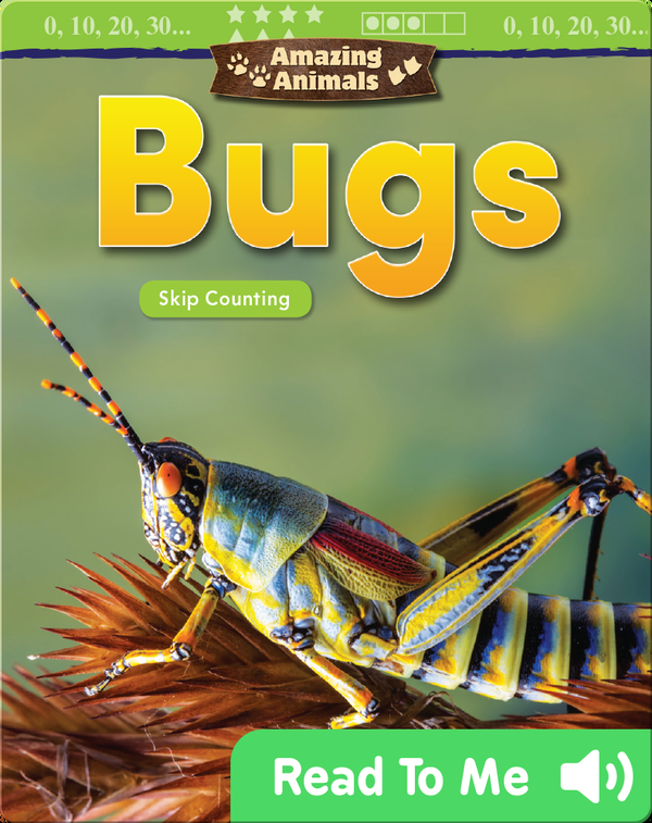 Amazing Animals: Bugs: Skip Counting