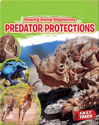 Amazing Animal Adaptations: Predator Protections