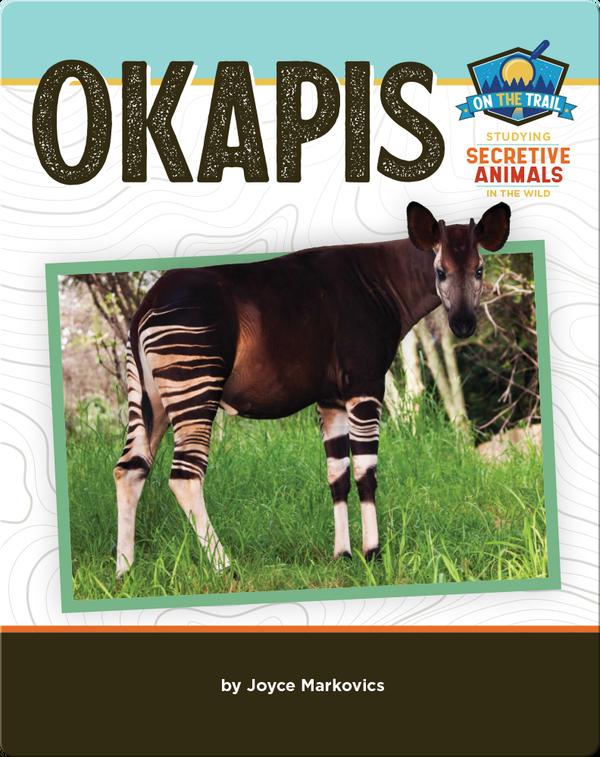 Study of Secretive Animals: Okapis