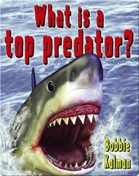 What is a Top Predator?