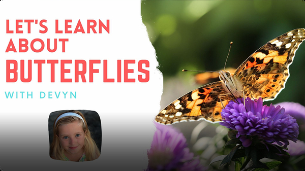Adventure Family Journal: Let's Learn About Butterflies