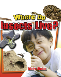 Where Do Insects Live?