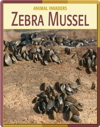 Animal Invaders: Zebra Mussel