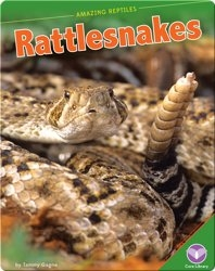 Amazing Reptiles: Rattlesnakes