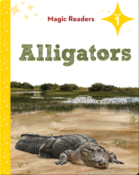 Magic Readers: Alligators