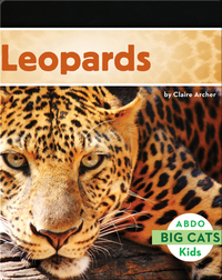 Big Cats: Leopards