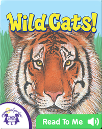 Wild Cats!