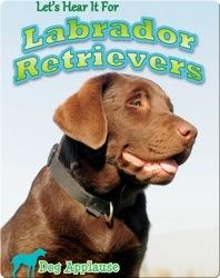 Let's Hear It For Labrador Retrievers