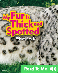 My Fur Is Thick and Spotted