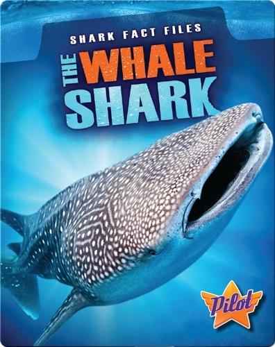 Shark Fact Files: The Whale Shark