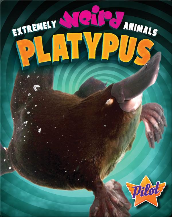 Extremely Weird Animals: Platypus