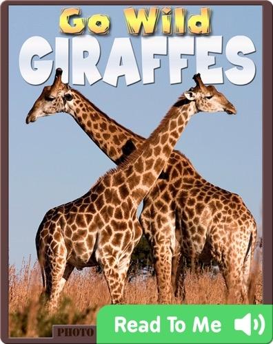 Go Wild Giraffes