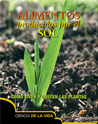 Alimentos producidos por el sol / Food From the Sun