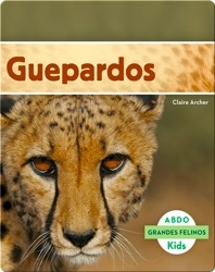 Guepardos