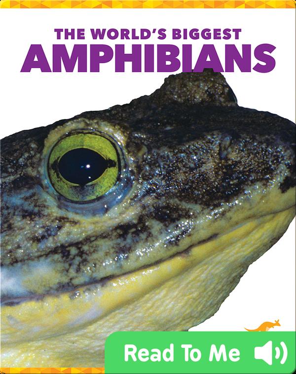 The World's Biggest Amphibians