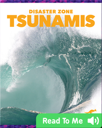 Disaster Zone: Tsunamis
