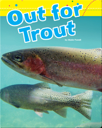Out For Trout