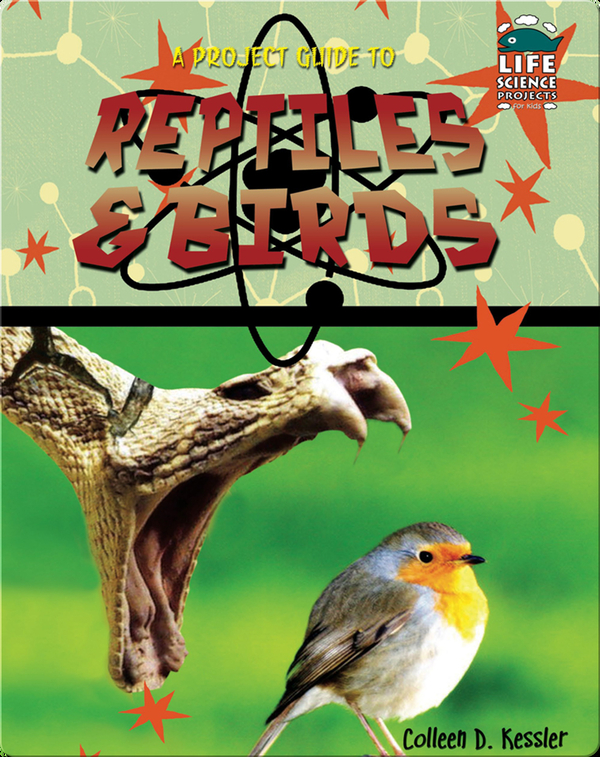 A Project Guide to Reptiles & Birds