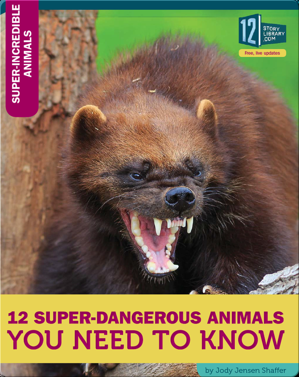12 Super-Dangerous Animals You Need To Know