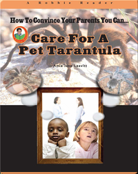 Care for a Pet Tarantula