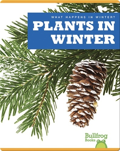 What Happens In Winter? Plants In Winter
