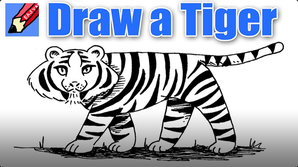 How to Draw a Tiger Real Easy