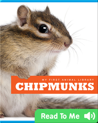 My First Animal Library: Chipmunks
