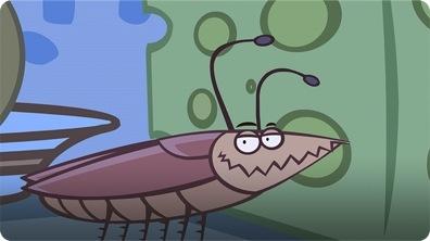 I'm a Cockroach