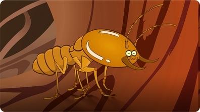 I'm a Termite