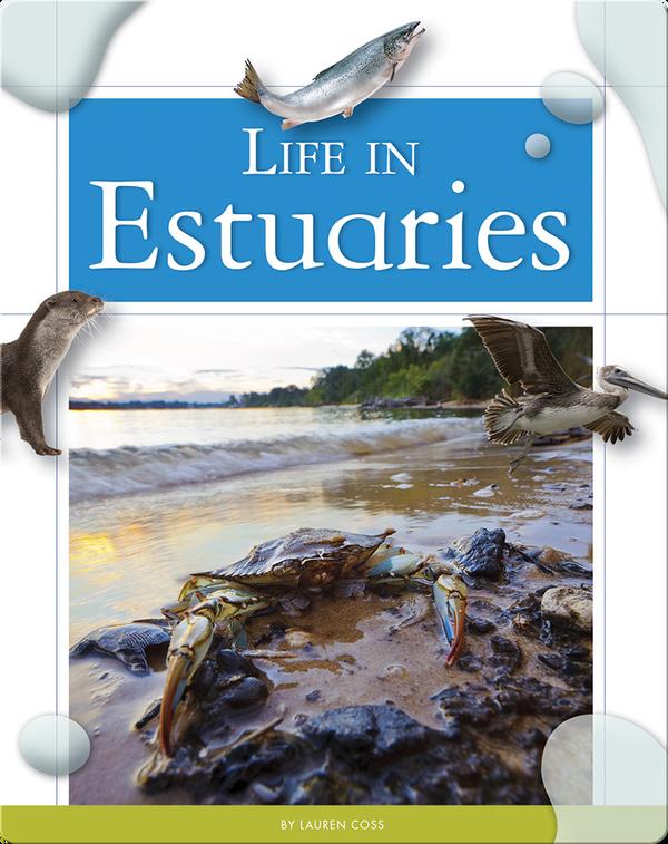 Life in Estuaries