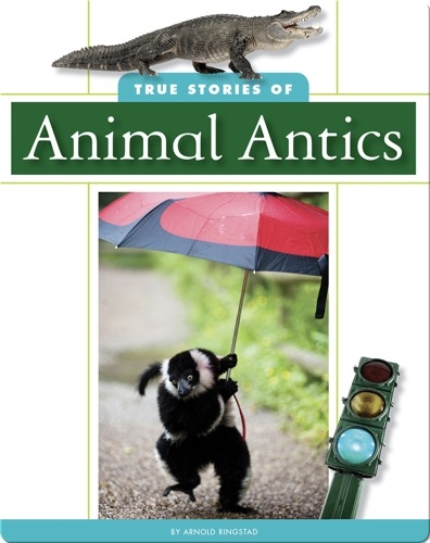 True Stories of Animal Antics