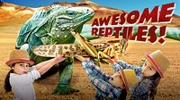 Reptiles for Kids | All About Reptiles | Fun Reptile Videos for Kids