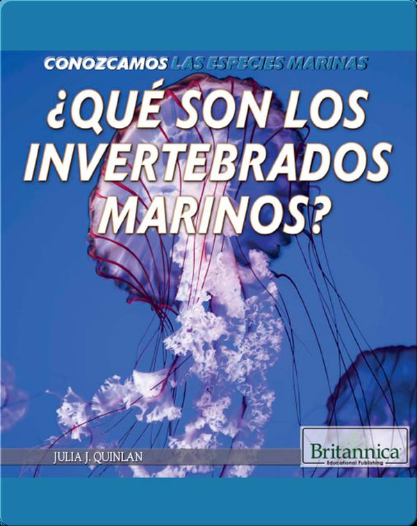 ¿Qué son los invertebrados marinos?