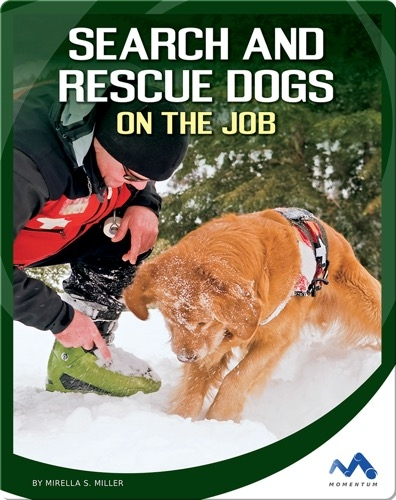 Search and Rescue Dogs on the Job