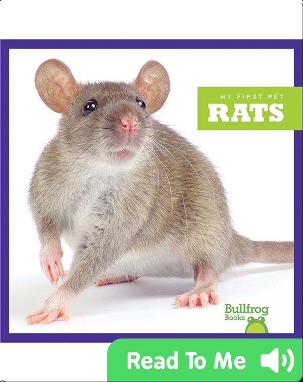 My First Pet: Rats